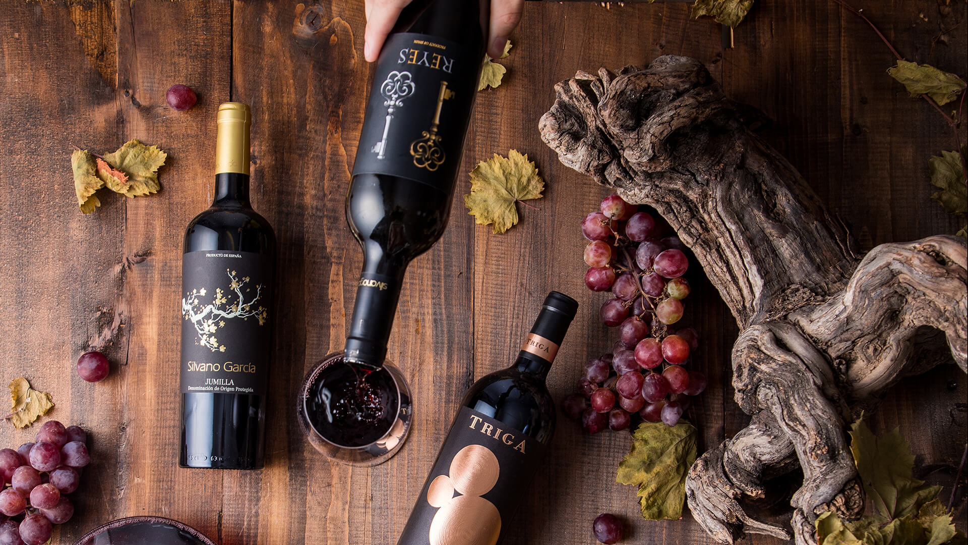 vinos-tinto